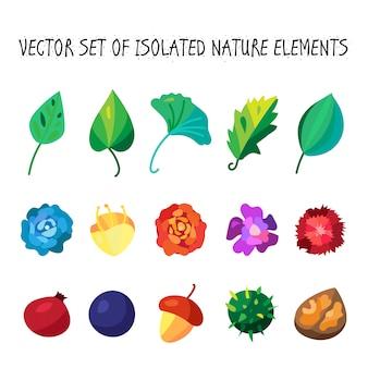 Coleção de ícones de frutas e folhas