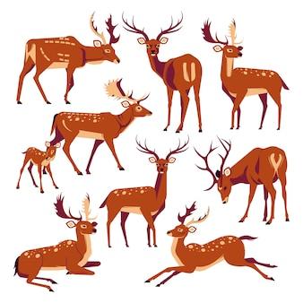 Coleção de ícones de rena bonito dos desenhos animados modelo vector