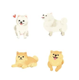 Coleção de ilustração de cães da pomerânia