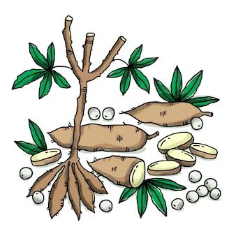 Coleção de ilustração de tapioca desenhada à mão