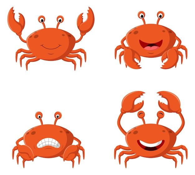 Coleção de ilustrações de caranguejo
