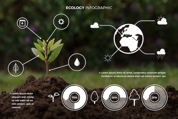 Coleção de infográfico de ecologia