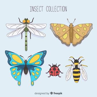 Coleção de insetos coloridos