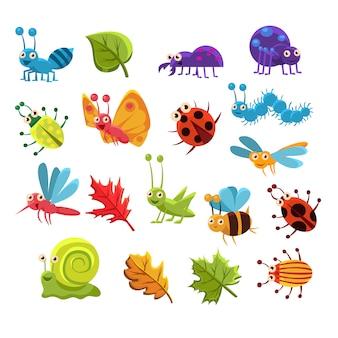 Coleção de insetos e folhas