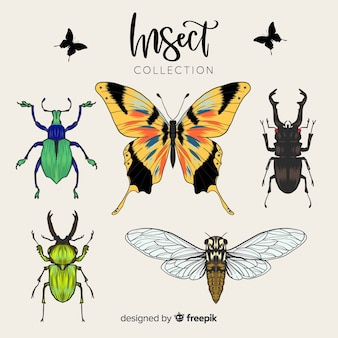 Coleção de insetos realista