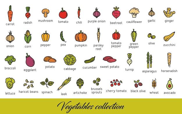 Coleção de legumes. ícones de alimentos vegetarianos saudáveis configurados