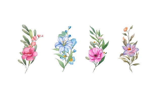 Coleção de linda flor isolada no branco
