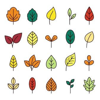 Coleção de linha de folhas