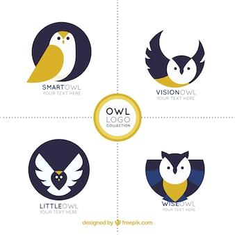 Coleção de logotipo criativo da coruja