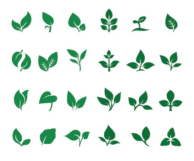 Coleção de logotipo da folha da natureza
