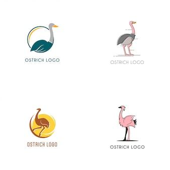Coleção de logotipo de avestruz