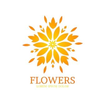 Coleção de logotipo de perfume floral de luxo