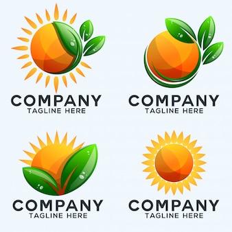 Coleção de logotipo sol e folhas