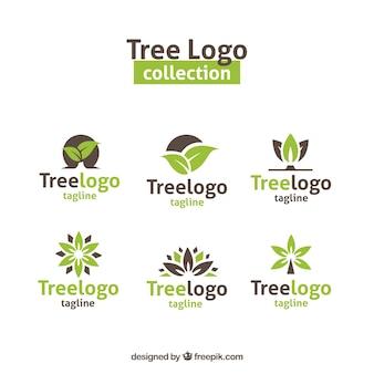 Coleção de logotipos de árvores modernas