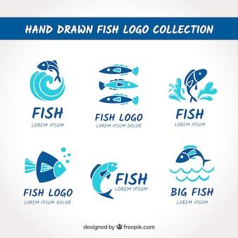 Coleção de logotipos de peixe para empresas de branding