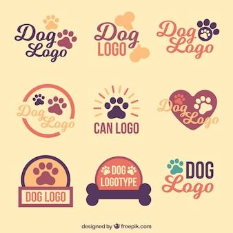 Coleção de logotipos do cão do vintage