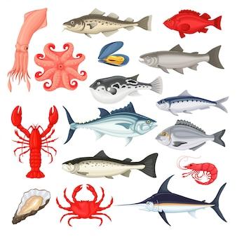 Coleção de luxo de frutos do mar