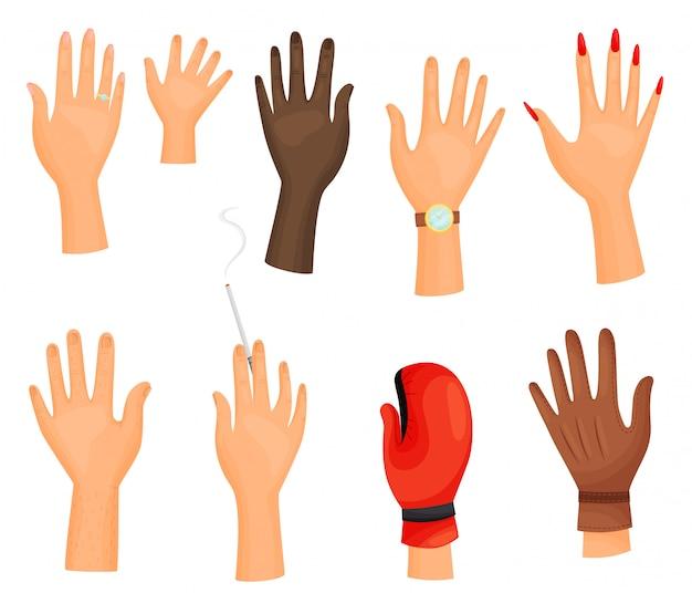 Coleção de mãos diferentes no fundo branco.