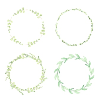 Coleção de moldura de coroa de flores em aquarela verde com folhas de eucalipto
