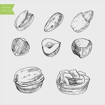 Coleção de nozes, amêndoa e amendoim