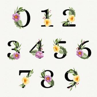 Coleção de números florais em aquarela