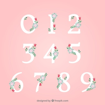 Coleção de números