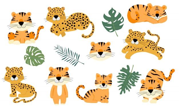 Coleção de objetos animais fofos com leopardo e tigre