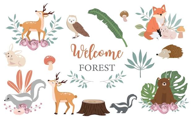 Coleção de objetos bonitos da floresta com design colorido