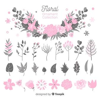 Coleção de ornamento floral
