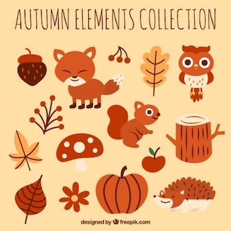 Coleção de outono de animais e elementos