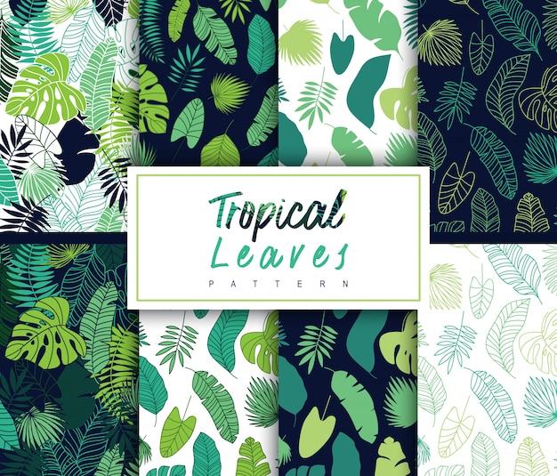 Coleção de padrão de folhas tropicais