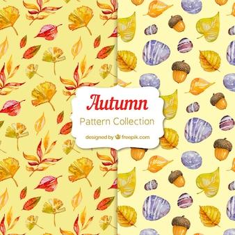 Coleção de padrão de outono em aquarela