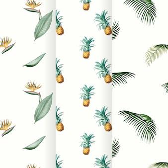 Coleção de padrão de verão tropical