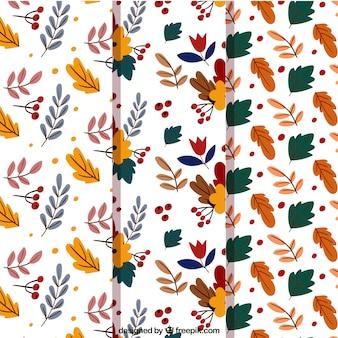 Coleção de padrões bonitos de folhas desenhadas a mão