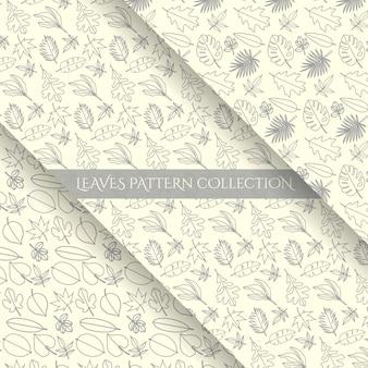 Coleção de padrões de arte de linha de folhas