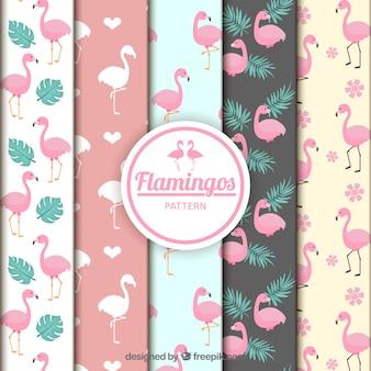 Coleção de padrões de flamingos em estilo simples