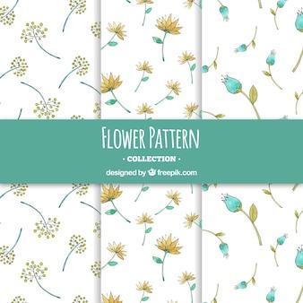 Coleção de padrões de flores em estilo aquarela