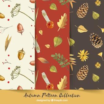 Coleção de padrões de outono com a natureza
