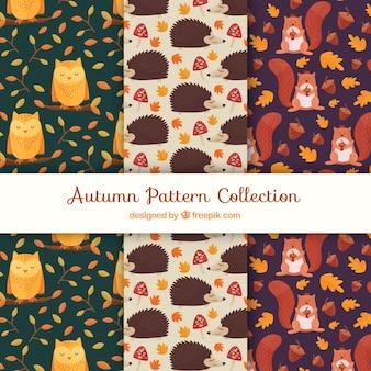 Coleção de padrões de outono com animais fofos