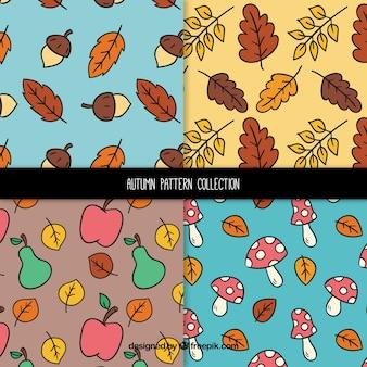 Coleção de padrões de outono com folhas e frutos