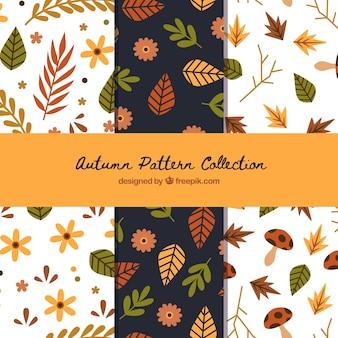 Coleção de padrões de outono com folhas