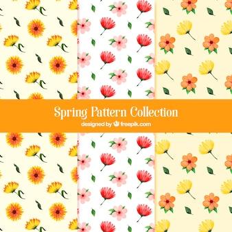 Coleção de padrões de primavera em estilo aquarela