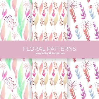 Coleção de padrões florais em estilo aquarela