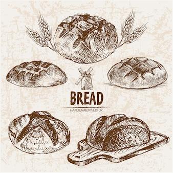 Coleção de pão arredondado