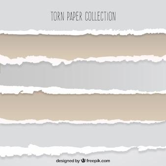 Coleção de papel rasgado