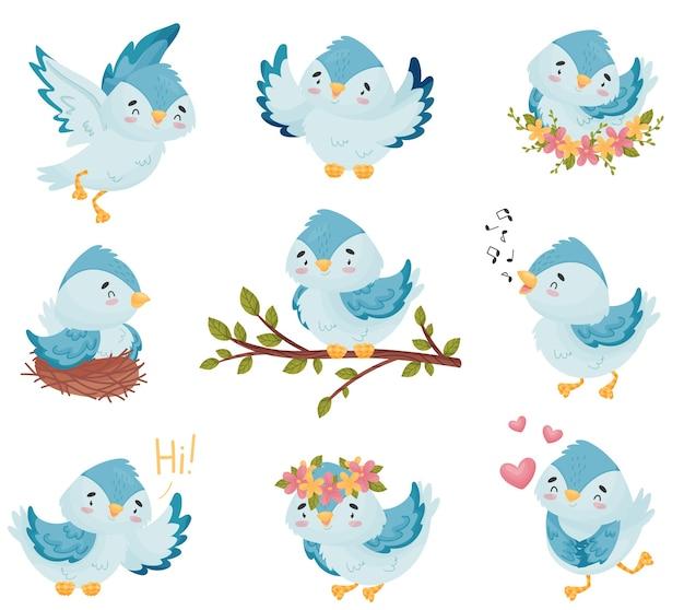 Coleção de pássaros azuis de desenhos animados