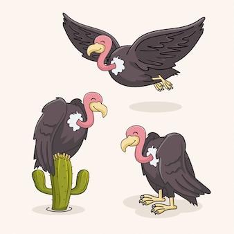 Coleção de pássaros de abutre