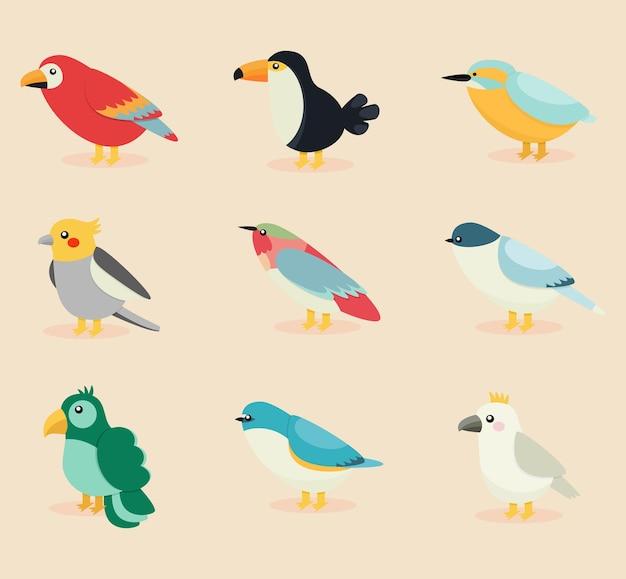 Coleção de pássaros exóticos de design plano