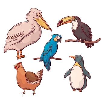 Coleção de pássaros exóticos e domésticos