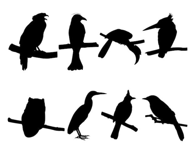 Coleção de pássaros no galho de árvore silhuetas.